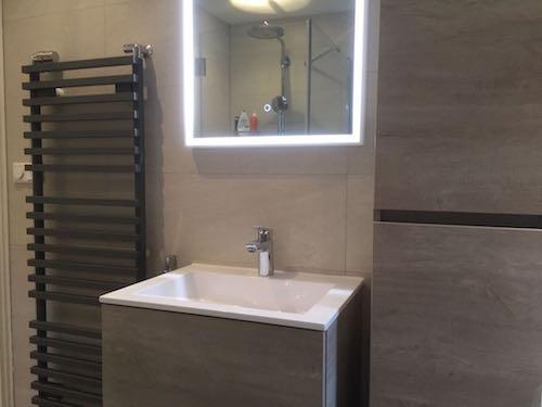 Kleine luxueuze badkamer Den Bosch | Den Bosch